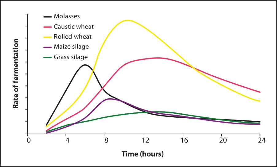 Rumen energy release graph