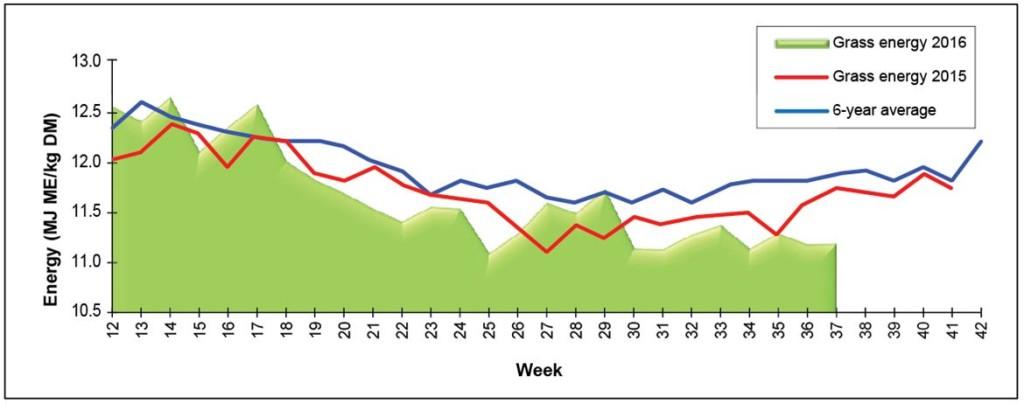 Grass Energy Graph