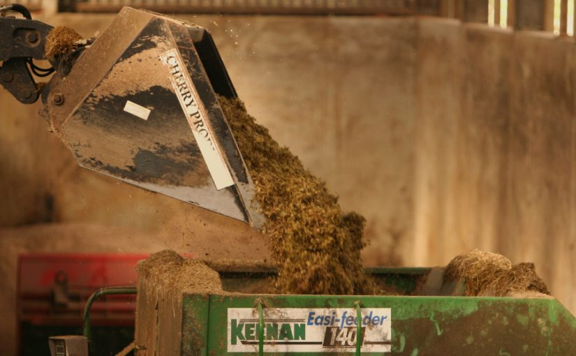 Intake consistency a critical factor in reducing feed costs per litre