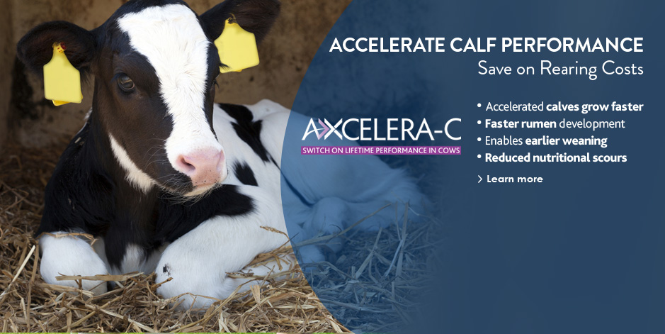Link to Axcelera-C product information